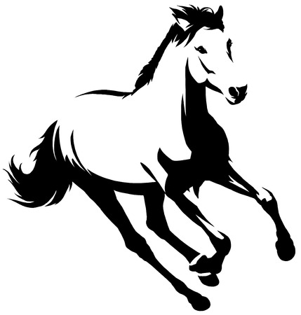 black and white linear draw horse illustration 版權商用圖片
