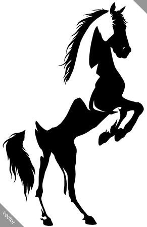 black and white linear draw horse illustration 向量圖像