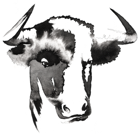 bull pen: black and white painting with water and ink draw bull illustration