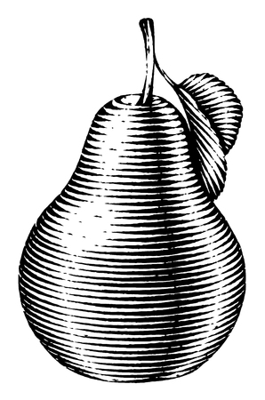Engraved isolated old-styled engrave illustration of a pear