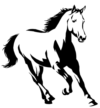 black and white linear draw horse illustration Stok Fotoğraf