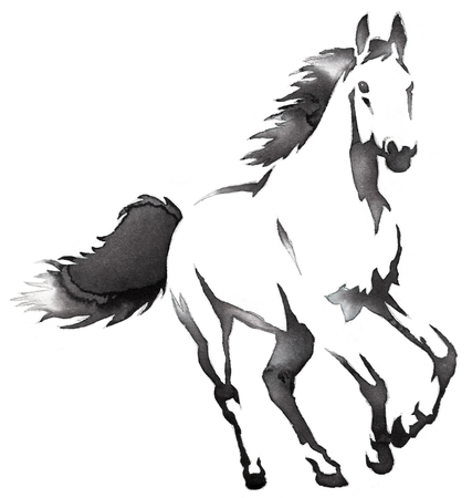 black and white painting with water and ink draw horse illustration Imagens - 69448096
