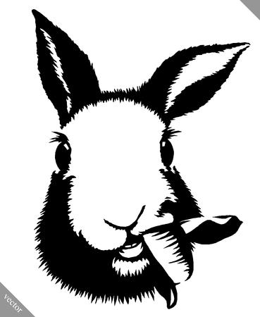 Schwarz-Weiß-Darstellung linear Unentschieden Kaninchen Vektor