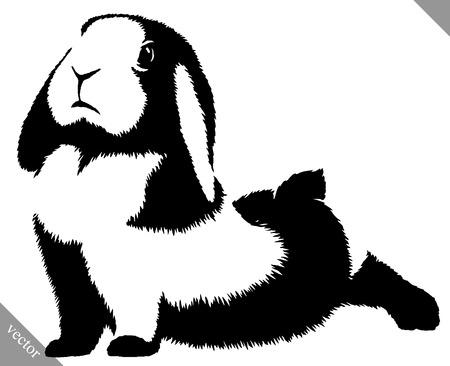 Schwarz-Weiß-Darstellung linear Unentschieden Kaninchen Vektor Vektorgrafik