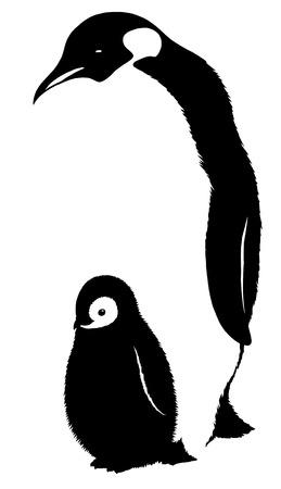 black and white linear paint draw penguin illustration Imagens - 70731423