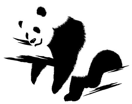 black and white linear paint draw panda illustration Фото со стока