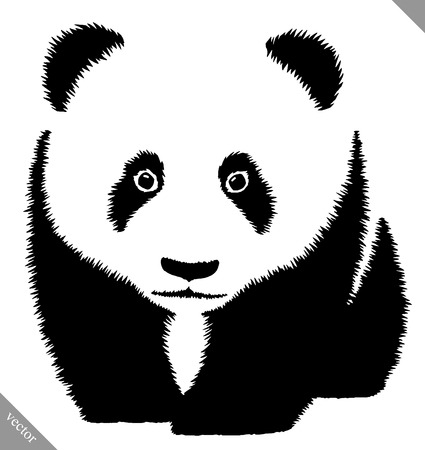 black and white linear paint draw panda vector illustration