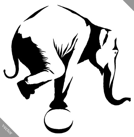 black and white linear paint draw elephant illustration