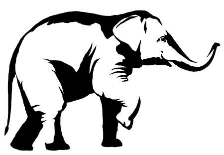 Peinture linéaire en noir et blanc dessiné illustration d'éléphant Banque d'images - 72448346