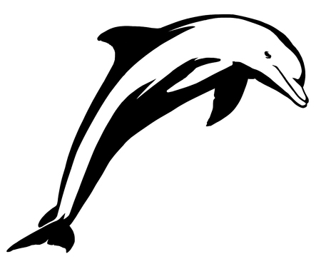 black and white linear paint draw dolphin illustration