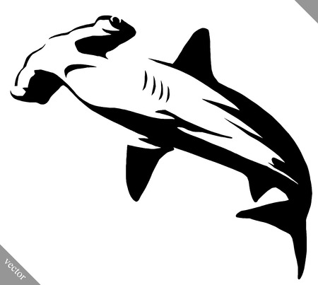Black and white linear paint draw hammerhead illustration Illustration