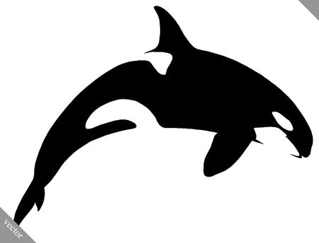 Pintura lineal blanco y negro dibujar la ilustración de la orca