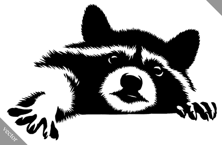 black and white linear paint draw raccoon vector illustration Vectores