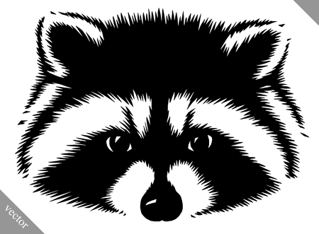 black and white linear paint draw raccoon vector illustration Ilustração