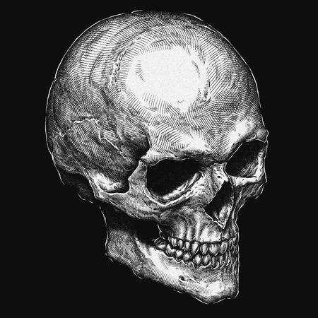 gothic style: Engrave isolated human skull hand drawn graphic illustration