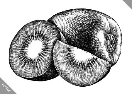 Engrave isolated kiwi hand drawn graphic vector illustration Illustration