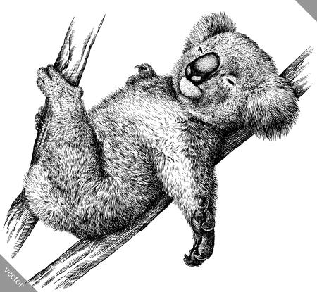 Zwart-wit graveren geïsoleerde Koala illustratie Vector Illustratie