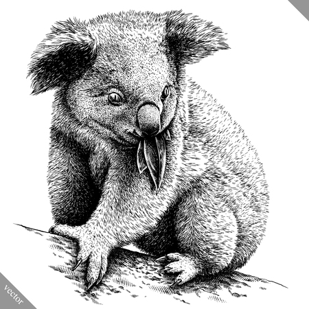 Black and white Koala icon.