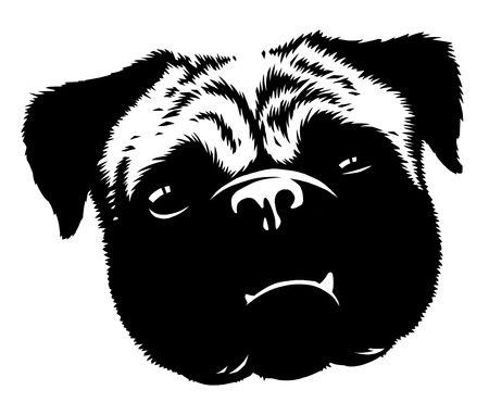 Black and white linear paint draw dog illustration Stock Photo