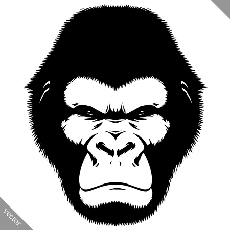 black and white linear paint draw monkey vector illustration Illustration