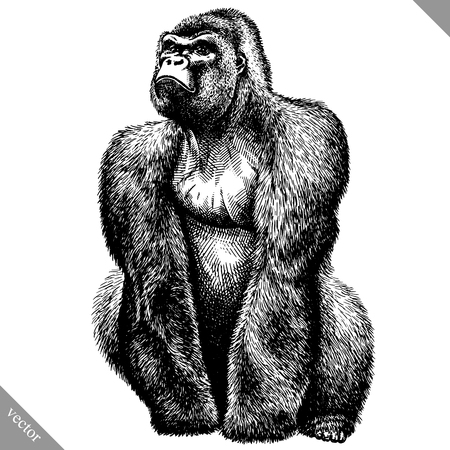 black and white engrave isolated monkey vector illustration 矢量图像