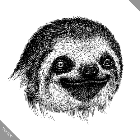 black and white engrave isolated sloth vector art Illustration