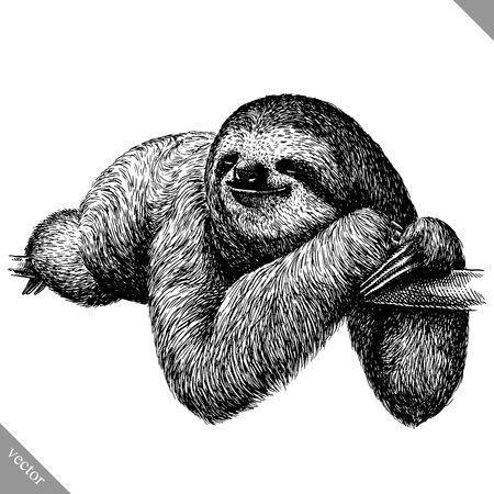 black and white engrave isolated sloth vector art Vectores