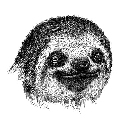 black and white engrave isolated sloth illustration Stock Photo