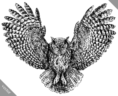 black and white engrave isolated owl vector art Illustration
