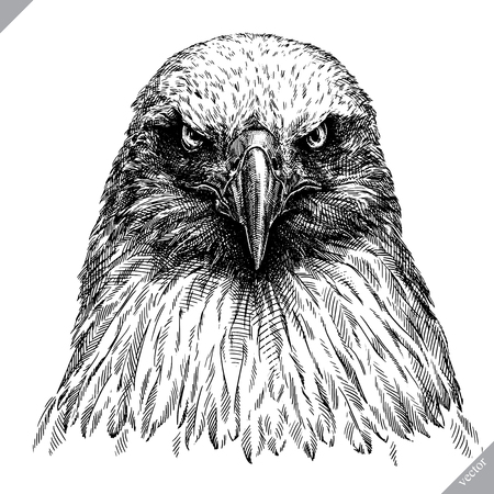 Black and white engrave, isolated eagle vector art illustration. Vettoriali