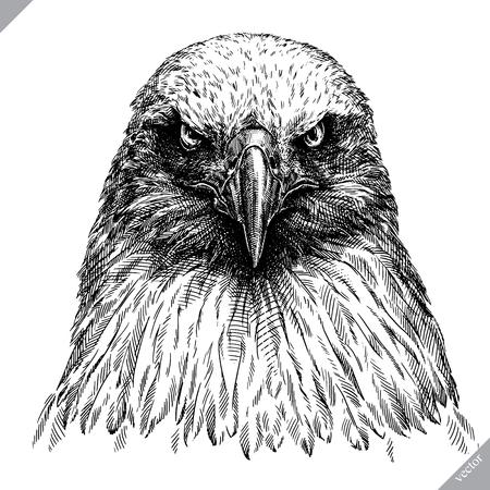 Zwart en wit graveren, geïsoleerde adelaar vector kunst illustratie. Stockfoto - 98476107