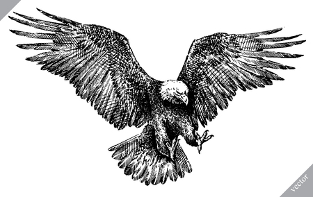 Black and white engrave, isolated eagle vector art illustration. Vectores