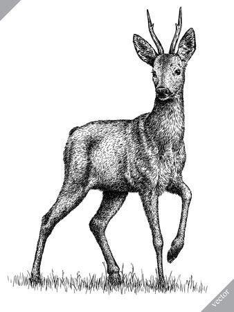 zwart en wit graveren geïsoleerde herten vectorillustratie