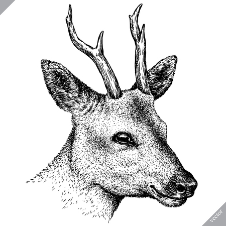 black and white engrave isolated deer vector illustration Ilustracja