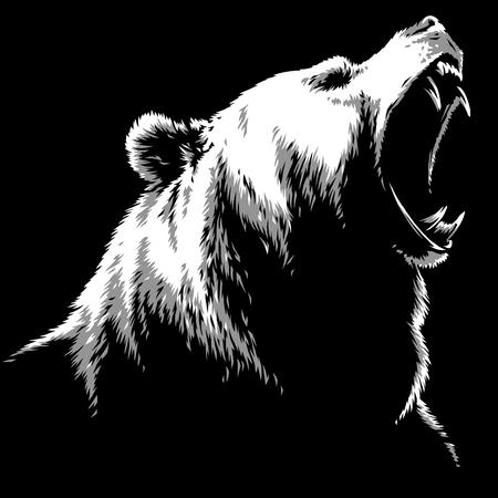 engrave isolated bear illustration sketch linear art Imagens - 122310575