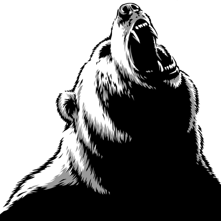 engrave isolated bear illustration sketch linear art