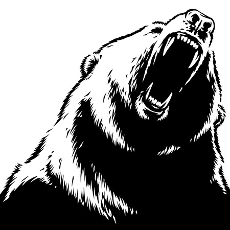 engrave isolated bear illustration sketch linear art Imagens - 122310584
