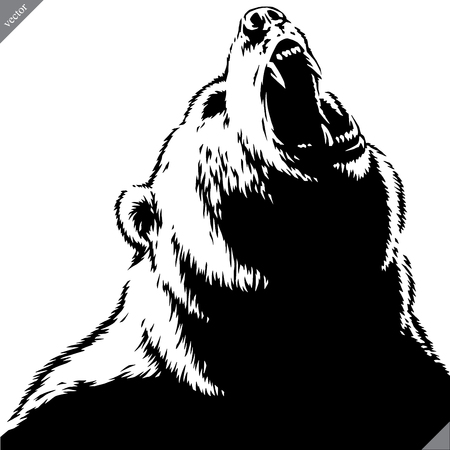 engrave isolated bear illustration vector sketch linear art Imagens - 122310627