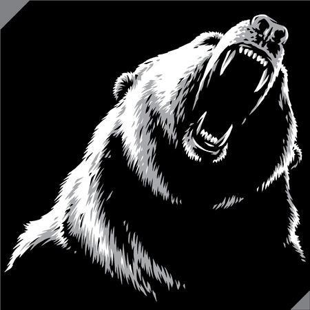 engrave isolated bear illustration vector sketch linear art Çizim