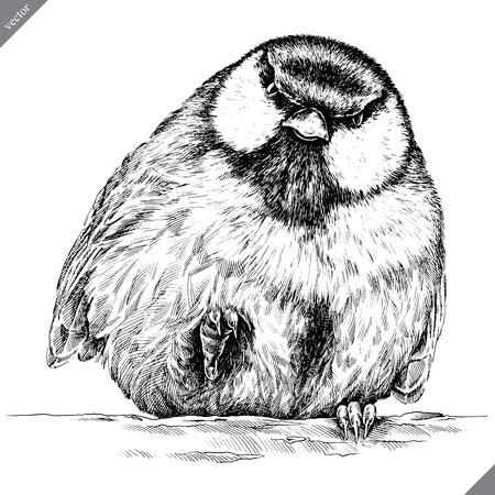 black and white engrave isolated tit vector art Ilustração