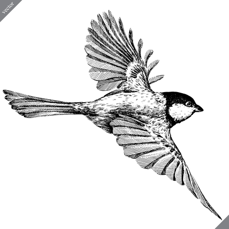 black and white engrave isolated tit vector art Stock Illustratie