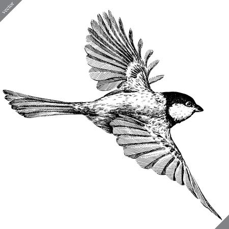 noir et blanc graver isolé mésange vector art Vecteurs