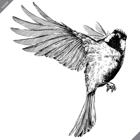 black and white engrave isolated tit vector art