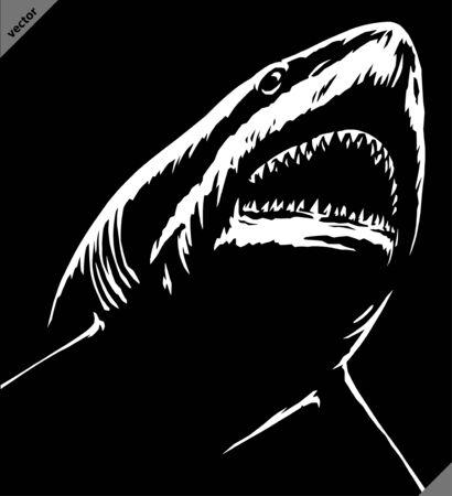 black and white linear paint draw shark illustration art Stock fotó