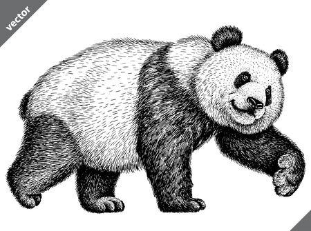 Ilustración de vector de panda aislado grabado en blanco y negro