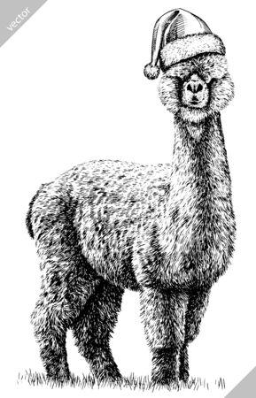 black and white engrave isolated Lama art