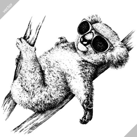 black and white engrave isolated Koala art Illustration