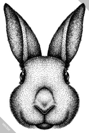 black and white engrave isolated rabbit vector illustration