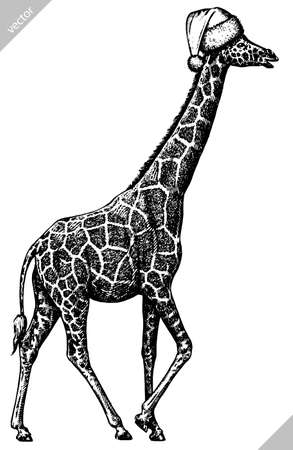black and white engrave isolated giraffe vector illustration 向量圖像