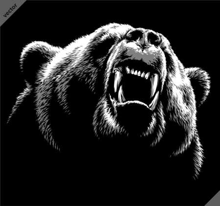 black and white linear draw bear vector illustration
